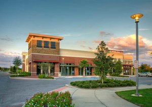 The Grove at Wesley Chapel - Wesley Chapel, Florida